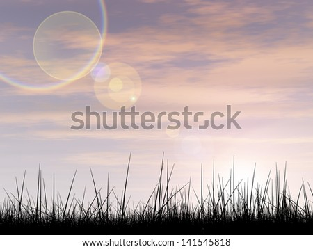 Concept or conceptual black grass or plant field or meadow silhouette in summer or spring evening over a sky at sunset with clouds background,metaphor to nature,landscape,rural,environment or freedom - stock photo