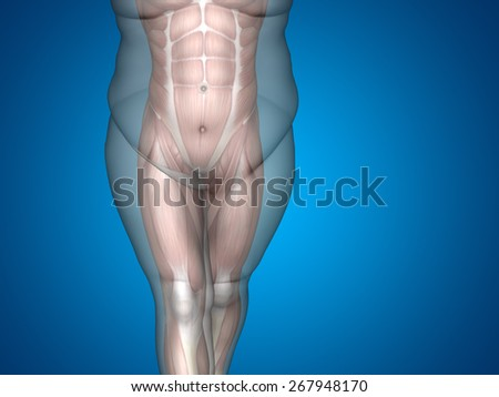 Concept or conceptual 3D fat overweight vs slim fit diet with muscles young man blue gradient background, metaphor weight loss, body, fitness, fatness, obesity, health, healthy, male, dieting, shape - stock photo