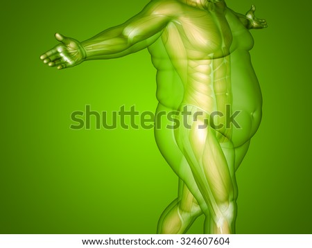 Concept or conceptual 3D fat overweight vs slim fit diet with muscles young man green gradient background metaphor weight loss, body, fitness, fatness, obesity, health, healthy, male, dieting or shape - stock photo