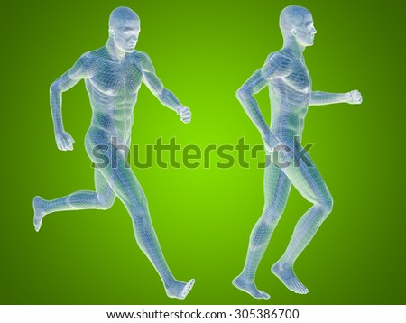 Concept or conceptual 3D human man or male skeleton anatomy transparent body over green gradient background metaphor to medical, health, science, biology, bone, joint, healthy, structure or healthcare - stock photo