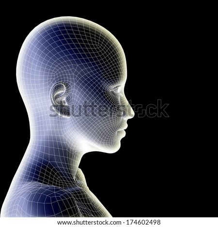 Concept or conceptual 3D wireframe human female head isolated on black background, metaphor to technology, cyborg, digital, virtual, avatar, model, science, fiction, future, mesh or abstract - stock photo