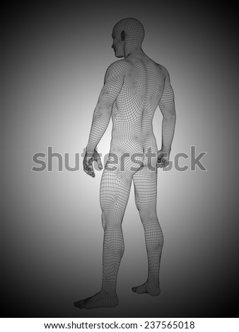 Concept or conceptual 3d wireframe male or man over black and white background as metaphor for anatomy, body, biology, medicine, muscle, mesh, muscular, anatomical, science, education, sport or mesh - stock photo