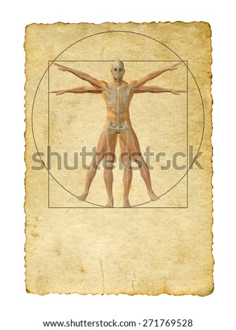 Concept or conceptual vitruvian human body drawing on old paper background as metaphor to anatomy, biology, Leonardo, classic, anatomical, circle, symbol, revival, proportion, skeleton or manuscript