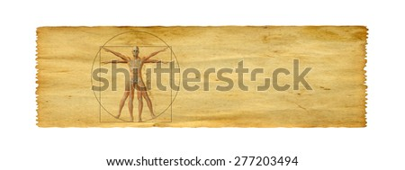 Concept or conceptual vitruvian human body drawing on old paper background banner - stock photo