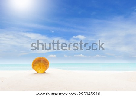 Concept Summer. Sea Shell on Sandy Beach - stock photo