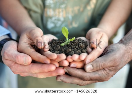 Conceptual closeup environment photo of hands holding a young plant - stock photo