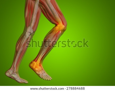 Conceptual 3D human man anatomy or health design joint or articular pain, ache or injury on green gradient background for medical fitness medicine bone care hurt osteoporosis painful arthritis or body - stock photo