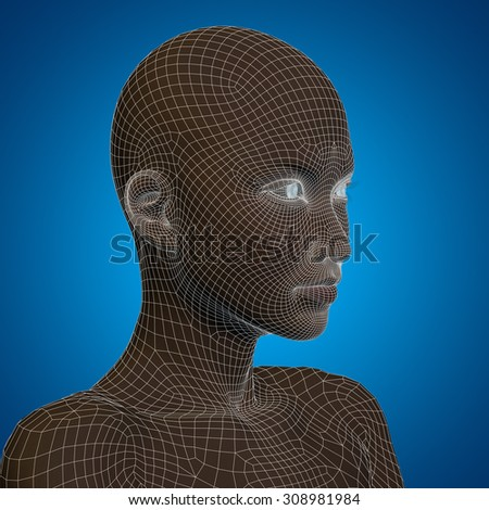 Conceptual 3D wireframe young human female or woman face or head on blue background metaphor for technology, cyborg, digital, virtual, avatar, model, science, fiction, future, mesh or abstract