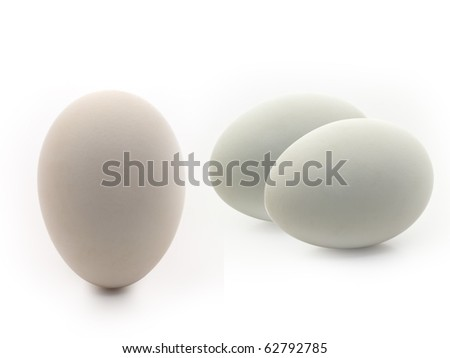 Conceptual group of eggs against white background