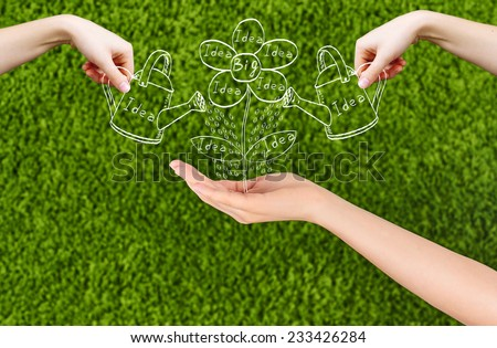 Conceptual image of a woman hand growing new ideas and a Big idea flourish, and two hands watering the  flower drawing isolated on green background.Conceptual idea, Team. - stock photo