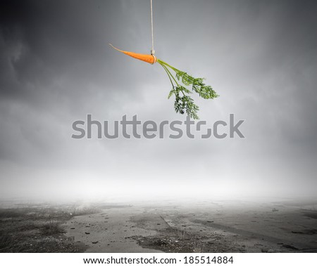 Conceptual image of carrot dangling on rope - stock photo