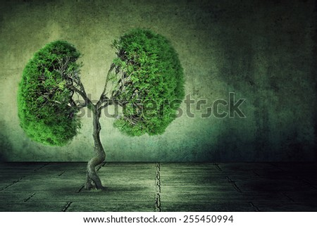 Conceptual image of green tree shaped like human lungs growing from concrete floor isolated on a background of grey wall. Urbanization concept   - stock photo