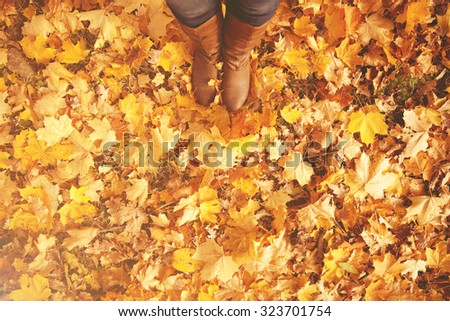 Conceptual image of legs in boots on the autumn leaves. Feet shoes walking in nature - stock photo