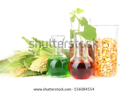 Conceptual photo of bio fuel.  Isolated on white - stock photo