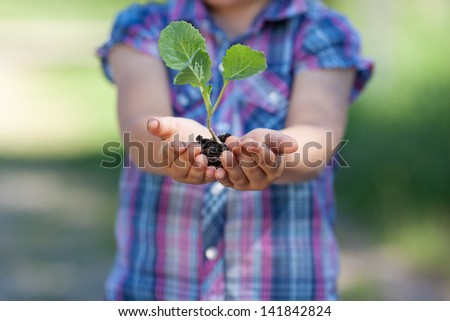 Conceptual portrait of little plant holding by the young girl - stock photo