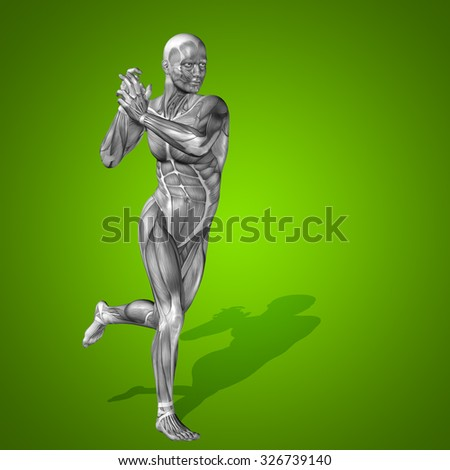 Conceptual strong human man 3D anatomy body with muscle for health sport on green background for medicine, sport, male, muscular, medical, health, medicine, biology, anatomical, strong fitness design - stock photo
