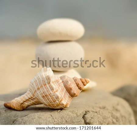 Conch shell and spa stones on the beach close up - stock photo