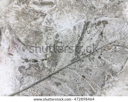 Concrete floor with leaves print