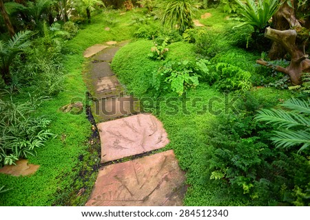 Concrete pavement in fern forest  - stock photo