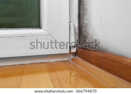 Condensation cause mold and moisture in the house - stock photo