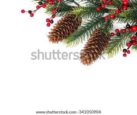 Cone and christmas tree isolated on white. Studio shot - stock photo