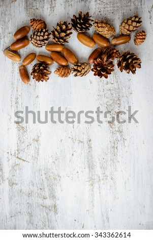 Cones and acorns on a white wooden table - stock photo