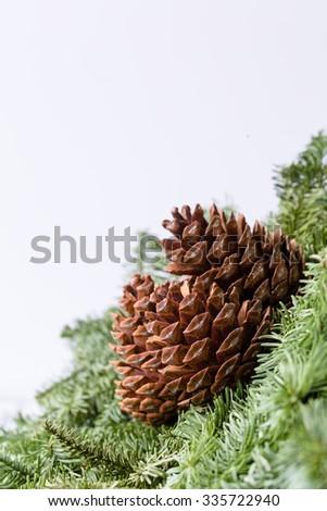 cones copy space - stock photo