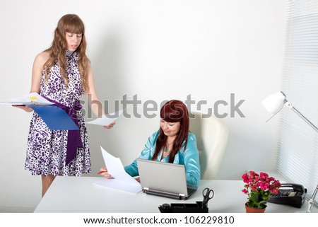 Confident business woman and a young secretary in a comfortable modern office - stock photo