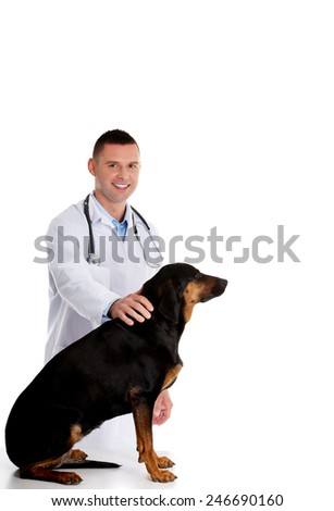 Confident male veterinarian examining adult dog - stock photo