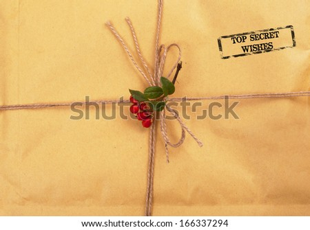 confidential envelope - stock photo