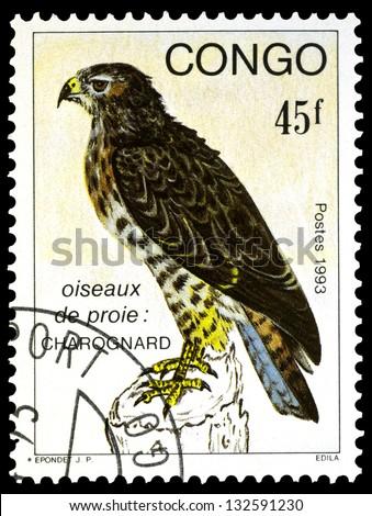 """CONGO CIRCA 1993: A stamp printed in Congo, shows Verreaux Eagle Bird, with the same inscription, from the series """"Birds of prey"""", circa 1993 - stock photo"""