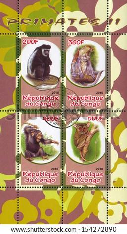 CONGO - CIRCA 2010: stamp printed by Congo, shows animal, circa 2010 - stock photo