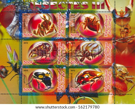 CONGO - CIRCA 2010: stamp printed by Congo, shows insects, circa 2010