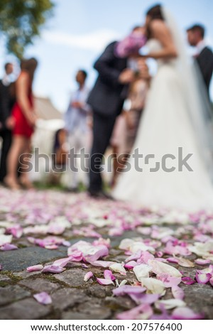 Congratulating wife for wedding. Wedding guests toasting happy bride. Selective focus on floor with rose petals. Moments of wedding ceremony. - stock photo