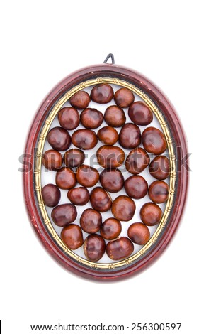 conker fruits seeds chesnuts in wooden picture oval frame isolated on white
