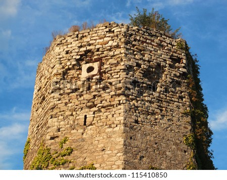 Constantinople old wall - stock photo