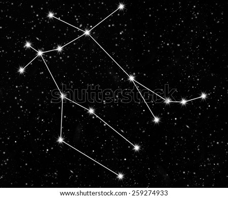 constellation Gemini against the starry sky