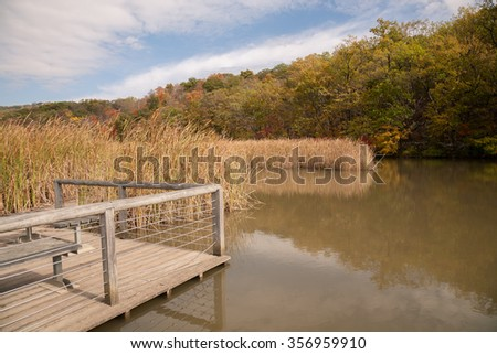 Constitution Marsh is a 270 acre wildlife sanctuary on the east coast of the Hudson River near Cold Spring, NY