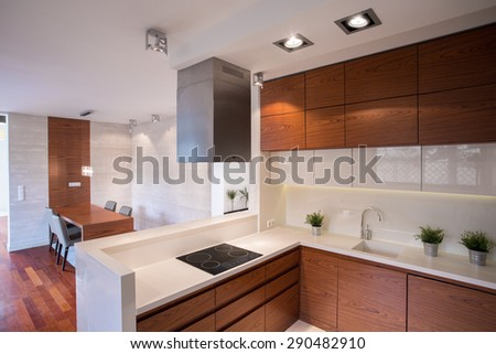 Contemporary decorated kitchen connected with dining hall