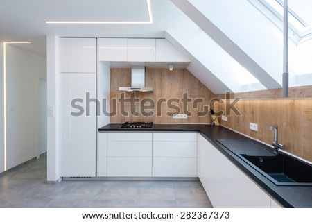 Contemporary kitchen interior