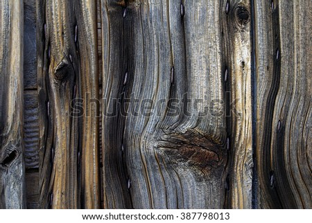 contrasted old wood texture
