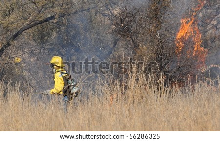 Control Burn - stock photo