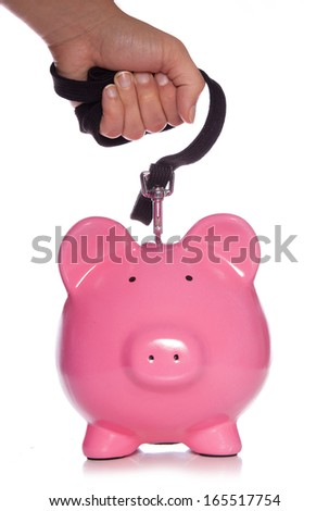 controlling your money piggy bank studio cutout - stock photo