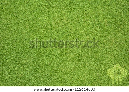 Cook and spoon on green grass texture and  background