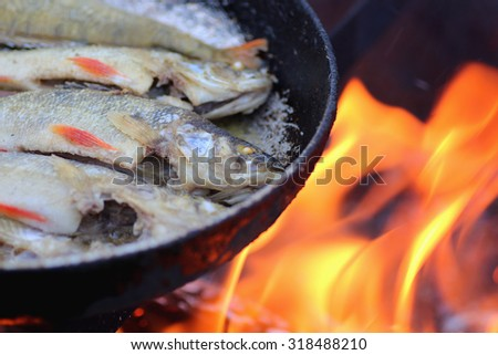 cook fish fried in oil on the fire - stock photo