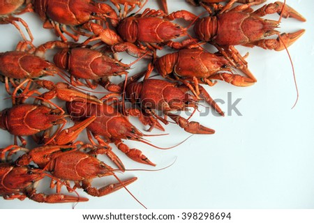 cooked Crayfish on a white background. Crayfish isolated on white