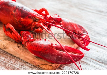 Cooked lobster on wooden background - stock photo