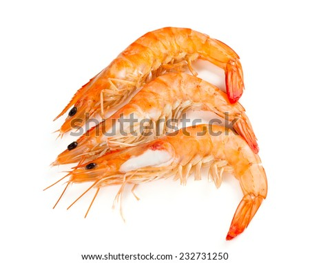 cooked shrimps isolated on white - stock photo