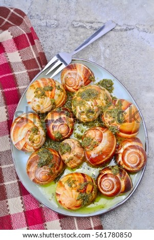 Cooked snails, known as Escargot, with garlic sauce