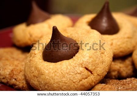 Cookie Closeup - stock photo